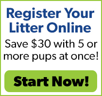 Online Litter Registration